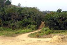 Africa/ Sierra Leone
