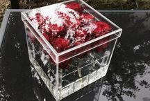 Henrietta's roses