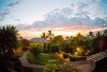 Hawaii / by Nadira Narine