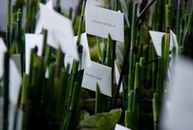 Wedding Escort card ideas / Wedding Escort card ideas  / by Bella Celebrations
