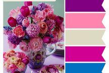 Color Palettes~  / by Kathy Baxter Gautier