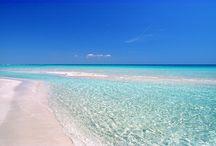 Punta Prosciutto Puglia