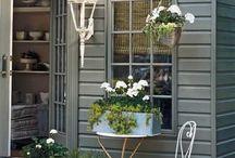 庭の欲しい小さい家