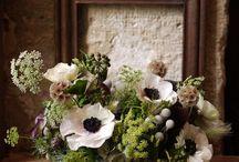 Compo florales