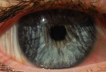 Eye close ups - photographed by me / These close ups belong to those random people who I stopped and asked to let me photograph their eyes. Have I mentioned that I love the human iris? :)