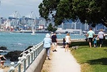 Auckland for dad & kids