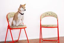 ROK || DOGS ON CHAIRS