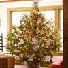 Christmas / by Sue Klejeski