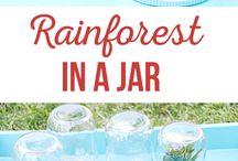 Rainforest ideas