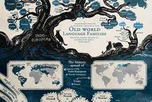Infographics / Beautiful infographics