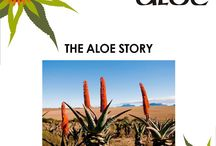 Aloe Ferox / The world over, users revere aloe for it's numerous properties. Healing, detoxifying, anti-inflammatory, Anti Bacterial, Anti-Viral and Anti-Parasitic – and those are only the ways in which aloe helps in maintaining personal wellness. For more click here:http://on.fb.me/1aromes #aloe, #wellness, #detoxifying
