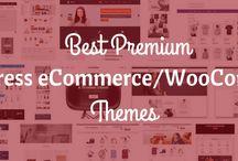 Best WordPress eCommerce Theme
