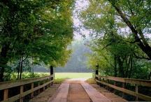 Bridges / Private driveway bridges