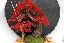 Деревья из биссера
