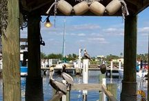 Places to go and Things to do in Charlotte County