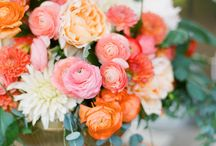 L+M Wedding / Ideas