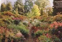 landscaping hillside