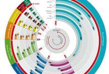 Infographic e adv
