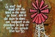 WoOrDe in Afrikaans