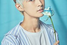 Ace - Woo Young