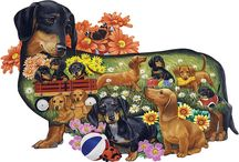 Doxie Doodles / Everything Dachshund!! / by mybestfriends