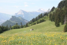 Switzerland / by Angel Sadal