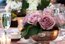 Cashemere rose