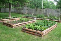 Pomysły ogrodnicze