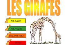 Projecte Girafes
