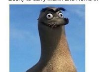 Gerald / Gerald from finding Dory