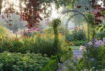 Garden- ornamental