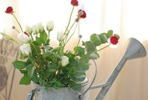 Flowers in watering can / by Teresa * Versos & Arte