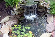 Ponds, Waterfalls & Water Features / by Debbys Garden Links