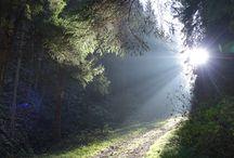 Schwarzatal / Eine der schönsten Gegenden im Thüringer Wald, besonders im Herbst