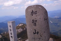 Mt. KOREA