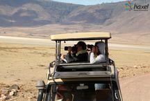 Tanzania z Haxelem / Niewiele miejsc na ziemi potrafi tak poruszyć wyobraźnię ludzi, jak Tanzania, magiczny kraj, gdzie można obserwować dzikie zwierzęta w naturalnym środowisku. Safari do parków narodowych Tanzanii, które stanowią wizytówkę Czarnego Lądu, jest niezapomnianym przeżyciem, podczas którego można zapolować z kamerą na znane nam jedynie z ogrodów zoologicznych lwy, lamparty, nosorożce, słonie, bawoły, zebry czy żyrafy. Tutejsze niezwykłe krajobrazy oraz bogactwo fauny i flory potrafi zauroczyć każdego.