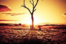 Sunsets & sunrises / Beautiful nature