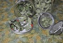 Handy-Dandy Herbs / by Elizabeth Quandt-Evans