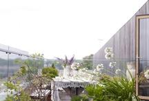 {FDL} Roof Terrace