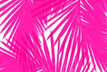 COLOR | Pink