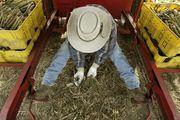 F A R M E R S / Meet our Michigan farmers.