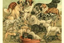 Simply Victorian Art / Restored antique illustrations from the Victorian era.   / by Charting Nature