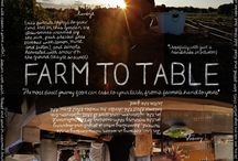 Sustainable / Ideas for a sustainable food system
