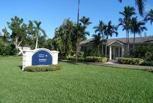 Discover Lyford Cay