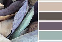 Interior Colour Ideas