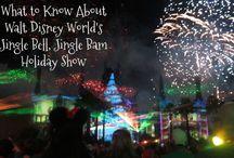 Disney World Fun
