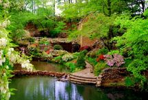 Best Garden Pond Ideas / I've been making ponds in gardens for a lot of my life. Here is a collection of ideas for my next dig and build.