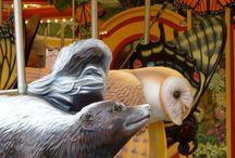 carousels / by Teri Thomason