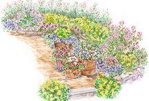 Beetplan / Die richtige Pflanzenauswahl und eine stimmige Kombination & Anordnung macht jeden Garten zum blühenden Hingucker.