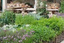 Garten / Ideen für einen schönen Kleingarten
